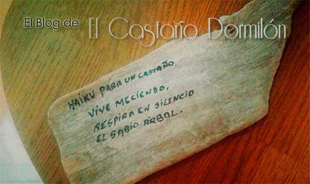 Blog - El Castaño Dormilón